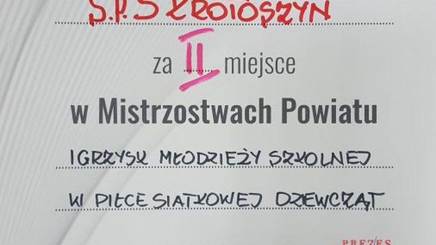 Mistrzostwa Powiatu Krotoszyńskiego w piłce siatkowej dziewcząt